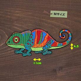 アイロンワッペン( カメレオン グリーンMIX )(Mサイズ)
