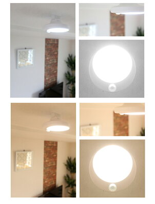 人感センサー付小型LEDシーリングライトミニシーリングライト送料無料小型ledシーリングライト小型天井照明照明センサー感知自動コンパクト廊下階段電球色昼光色トイレ廊下通路おしゃれCL-SS08