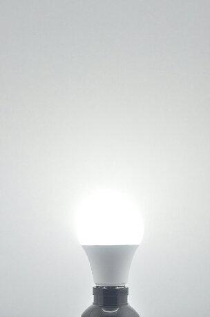 LED電球E2640W相当電球色昼光色LDA5-C40IIビームテック