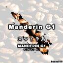 マンデリンG1(200g)