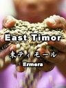 サービス 東ティモール