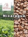 【送料無料】ニカラグア・マラゴジーペ(1Kg)