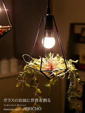 ガラスのお皿に世界を創るペンダントライト1灯ジェリコ