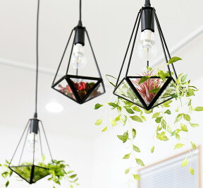 3灯並び、それぞれのお皿に違うものを飾っている。下から見たイメージ