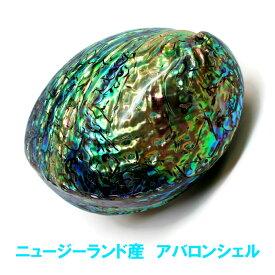アバロンシェル ニュージーランド産 浄化皿 両面磨きパウアシェル 貝殻 abalone shell ホワイトセージ パロサントの浄化皿