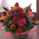 誕生日 結婚記念日 お見舞い 開店 ビジネス 開業 改築 新築 お祝い など 季節のお花を使った アレンジメント !! Harvest ハーベスト ( …