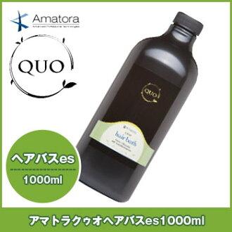 Amato la kuuo Havas es shampoo 1000 ml refill and refill amatora quo beauty salon business patronage