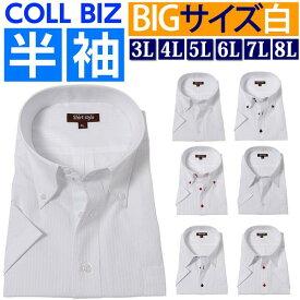 ワイシャツ 3l 4l 5l 6l 7l 8l 半袖 大きいサイズ yシャツ カッターシャツ 大きい 白 ボタンダウン レギュラー レギュラーシャツ ビジネス ビジネスシャツ 半袖シャツ メンズ おしゃれ クールビズ ノーネクタイ 父の日 首 3L 45/4L 47/5L 49/6L 51/7L 54/8L 57 /ysh-5004