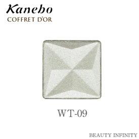 【 P2倍 + 3倍 + 5倍 の日 】 カネボウ kanebo コフレドール アイカラー WT 09