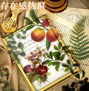 海外 大きい フレークシール ステッカー クリア PET素材 植物 花 フラワー 葉 果実 フルーツ 木の実 きのこ マッシュルーム モノクロ ジャンクジャーナル コラージュ素材 デコレーション 手帳