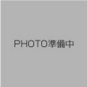 【レワード】 2ボタンメッシュシャツ 野球ユニフォームシャツ [カラー:ブラック×グレー] [サイズ:M] #UFS-112 【スポーツ・アウトドア:野球・ソフトボール:ウェア:競技用ユニフォーム】