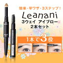 Leanani eyebrow set