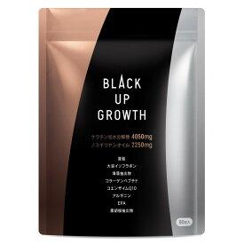 [SS期間店内全品ポイント5倍]BLACK UP GROWTH ノコギリヤシ ケラチン高配合 厳選20種類の成分配合 ヘアケアサプリ 30日分