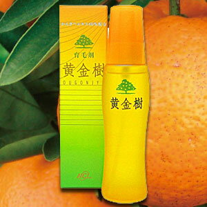 【BSP】【F2-c3】【数量限定】パッケージ汚れ品・箱破れ品等の超OUTLET処分! 日本かんきつ研究所 柑橘系育毛剤 黄金樹