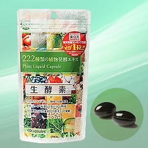 【BSP】ジプソフィラ生酵素 60粒(30日分)【送料無料】※ゆうパケット等で発送!