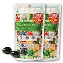 [2袋セット]ジプソフィラ生酵素 60粒【送料無料】※ゆうパケット等で発送!