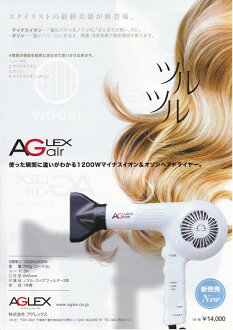 Agrex eager air dryer 1200 W negative ion & ozone hair dryer AGLEX AG air