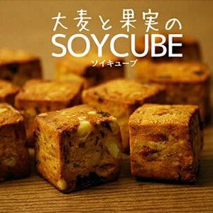 【大麦と果実のソイキューブ】食物繊維 ドライフルーツ チョコレート くるみ マンゴー バナナ パイナップル クランベリー ダイエット食品 ダイエットスイーツ 水で膨らむ お通じ