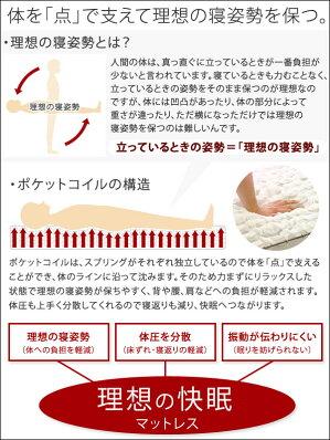 送料無料ポケットコイル・マットレス(ソフト)(セミダブル)