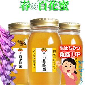 はちみつ 国産 非加熱 無添加 生蜂蜜 1kgx3本 ハチミツ はちみつ 非加熱 3000g