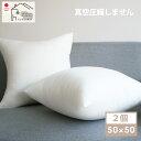 ヌードクッション 肉厚 50×50 2個セット 日本製 東レFT綿使用 クッションカバー用 送料無料 クッション 中身 背当て …