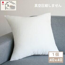 ヌードクッション 肉厚 40×40 日本製 東レFT綿使用 クッションカバー用 クッション 中身 佐川またはヤマト便 セアテ 背当て