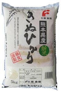 送料無料 米 10kg 九州熊本県産きぬひかり5kg×2個セット
