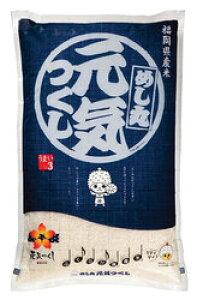 無洗米 10kg 九州 福岡県産「元気つくし」10キロ(5kg2個)九州産 無洗米 お米