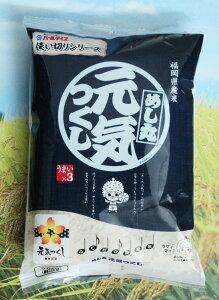 【お取り寄せ】【2合小袋パック】福岡県産元気つくし 九州産 米【研ぐお米】300g×15個セット
