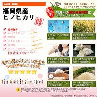 福岡県産ヒノヒカリ米無洗米5kg九州産送料無料【よかもん物産】