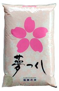 送料無料 無洗米 10kg 九州産 米福岡県人気ナンバーワンのお米夢つくし ゆめつくし10kg(5キロ×2個セット)