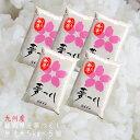 送料無料 無洗米 25kg 福岡県民米「夢つくし」送料無料 5kg5個セット