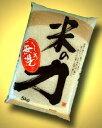 無洗米 10kg 「米の力」(R) 5kg2個セット 米 無洗米 5kg 送料無料