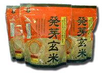 発芽玄米α化ドライタイプだからふっくら美味しい
