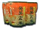 ヒノヒカリ 食べやすい発芽玄米 500gチャック付き袋 九州産 米 ひのひかり