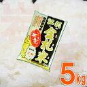 無洗米 5kg 送料無料岩手県産江刺金札米ひとめぼれ5kg×1個 いわて純情米