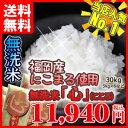 無洗米 送料無料 平成30年産 まとめ買い価格無洗米「心」30kgご注文専用ページ九州産 米 5kg 5キロ 送料込み