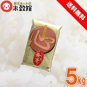 無洗米 送料無料 5kg 九州産当店人気ナンバーワン「心」 米 5kg×1個 洗わなくていい無洗米は、無洗米のお店「米穀館」におまかせください!