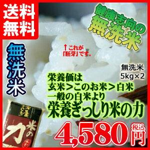 一般白米より栄養ぎっしり 九州産 米 「米の力」 無洗米 5kg×2個セット 送料無料 【送料無料100215】