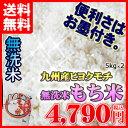 平成28年熊本県産 無洗米「もち米」5kg×2個セット 九州産 米 無洗米 5kg 送料無料 お米 5キロ2個 送料込み【HLS_DU】