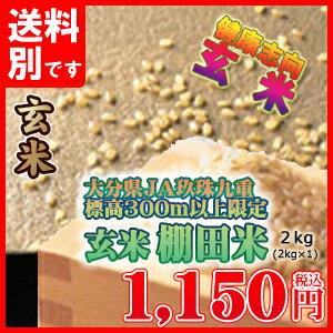 九州・大分県 玄米 ヒノヒカリ 大分玖珠・九重の棚田米 九州産 米 2kg