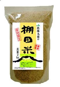 送料無料 玄米 大分玖珠・九重の棚田米 九州産 米 2kgヒノヒカリ以外の品種になることがあります