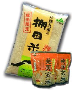 無洗米 5kg 大分棚田米無洗米+発芽玄米セット発芽玄米1kg&無洗米5kg ひのひかりセット