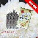 無洗米 5kg 福岡県産 ヒノヒカリ 九州産無洗米 5キロ 九州の水2L×4本セット 送料無料