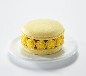 『マカロン・オ・フルール シトロン』 黄色 レモンフレーバー レモン ピューレ ミルクチョコレート セミスイート バレンタイン ホワイトデー