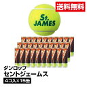 送料無料 テニス ボール 硬式 DUNLOP ダンロップ セントジェームス 4コ入り×15缶_4907913096877_97