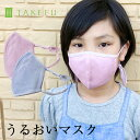 【送料無料】【2枚組】子供用マスク TAKEFU 竹布 キッズマスク サービスプラン 2枚組(メール便送料無料)ナファ生活…