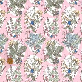 【LIBERTY】リバティ ピーターラビット™ タナローンHawthorn Bunnies ホーソーン・バニーズ dc30743-j20b ピンク