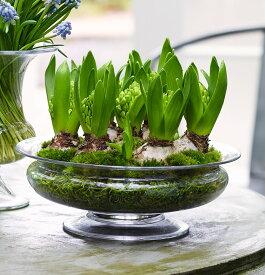 花瓶 フラワーベース ポット ホルムガード オールドイングリッシュ フワラーボウル (L) φ 25cmOLD ENGLISH Flower bowl 4343801吹きガラス ガラス 花器 トレー北欧 インテリア 雑貨 デンマーク