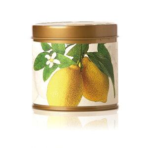 ソイキャンドル ロージーリングス SOY TINS Candle ソイキャンドル トラベル缶 <レモンブロッサム&ライチ> STIN-LBL8oz 燃焼時間 : 50時間アロマキャンドル